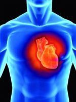 Как укрепить сердце и сосуды?