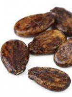 Поделки из арбузных семечек для детей
