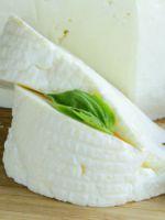 Адыгейский сыр - вкусные рецепты приготовления в домашних условиях