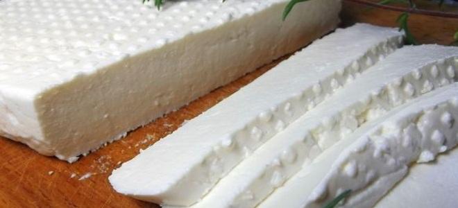 адыгейский сыр из творога в домашних условиях