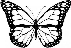 как сделать бабочку из бумаги 29
