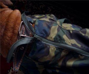 Одежда для собак своими руками 39