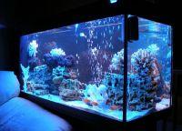 Ультрафиолетовая лампа для аквариума5