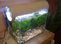 Ультрафиолетовая лампа для аквариума6
