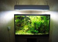 Ультрафиолетовая лампа для аквариума7