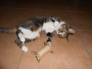 Игрушки для котят своими руками47