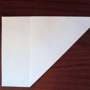 Как сделать из бумаги попугая 2