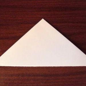 Как сделать из бумаги попугая 4
