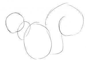 Как нарисовать белку 3