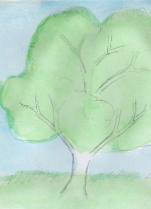 Как нарисовать дерево 13