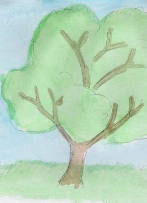 Как нарисовать дерево 14