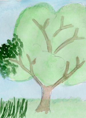 Как нарисовать дерево 15