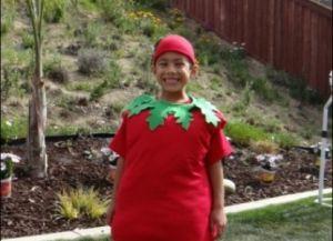 костюм помидора своими руками10