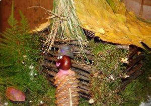 поделка домин из природного материала3