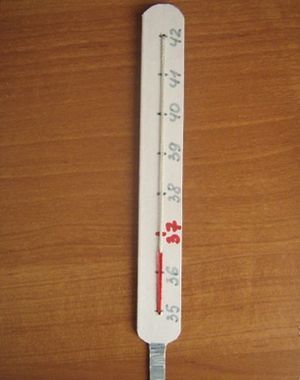 Термометр из картона своими руками7