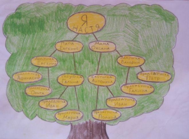 Как нарисовать семейное дерево в школу13