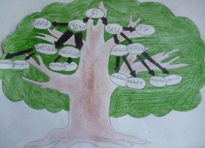 Как нарисовать семейное дерево в школу10