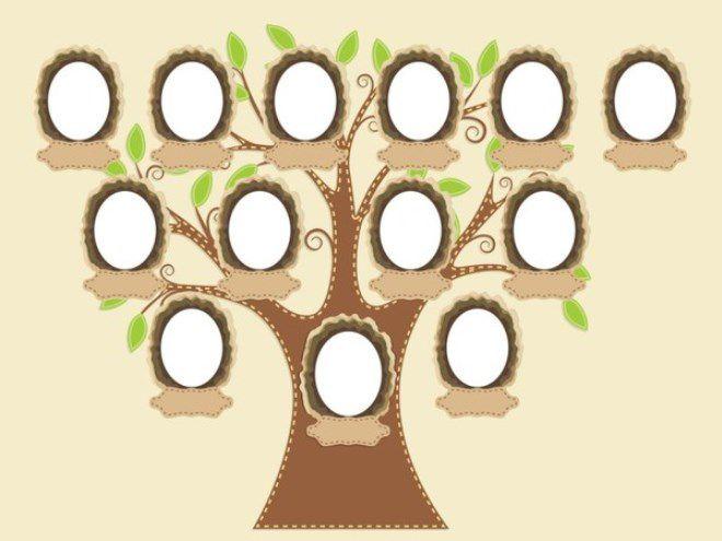 Как нарисовать семейное дерево в школу11