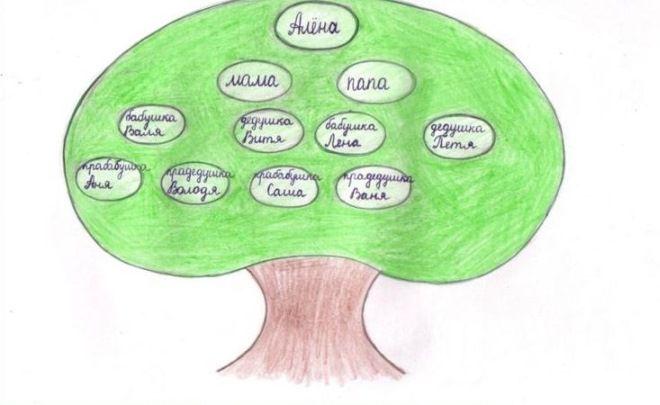Как нарисовать семейное дерево в школу14