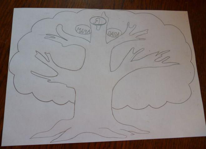 Как нарисовать семейное дерево в школу4