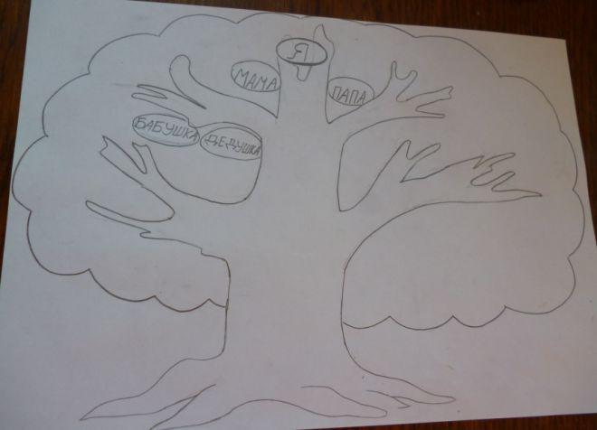 Как нарисовать семейное дерево в школу5