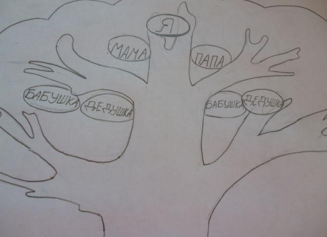 Как нарисовать семейное дерево в школу6