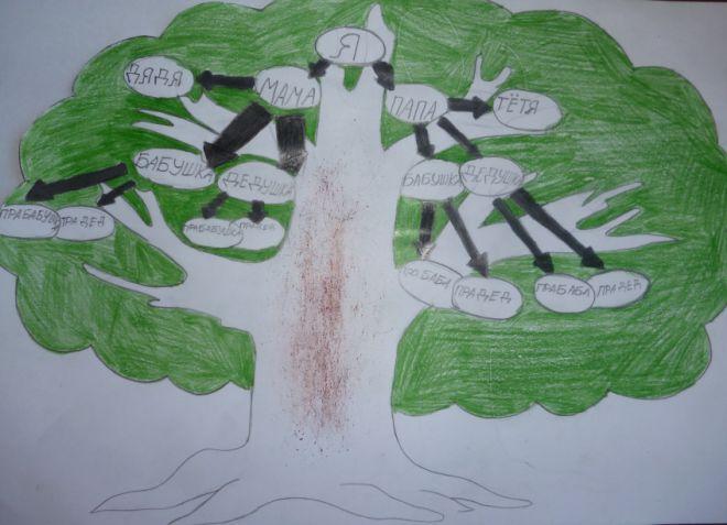 Как нарисовать семейное дерево в школу9