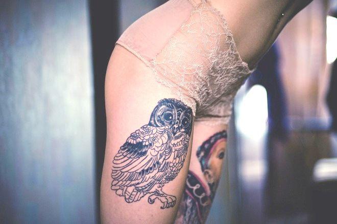 сова на ноге монохромная