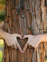 Деревянная свадьба - что подарить?
