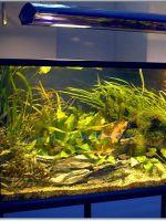 Светильник для аквариума своими руками