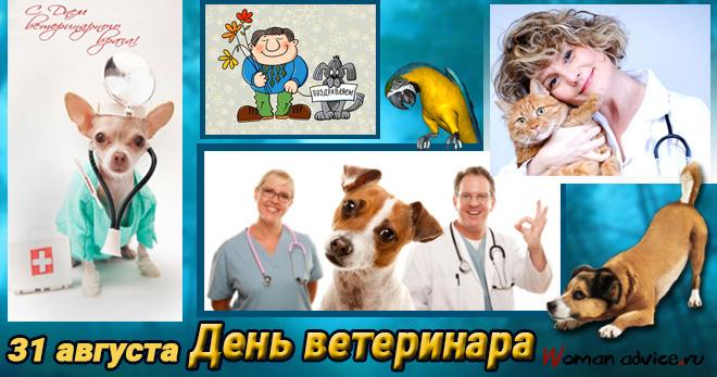 день ветеринара картинки