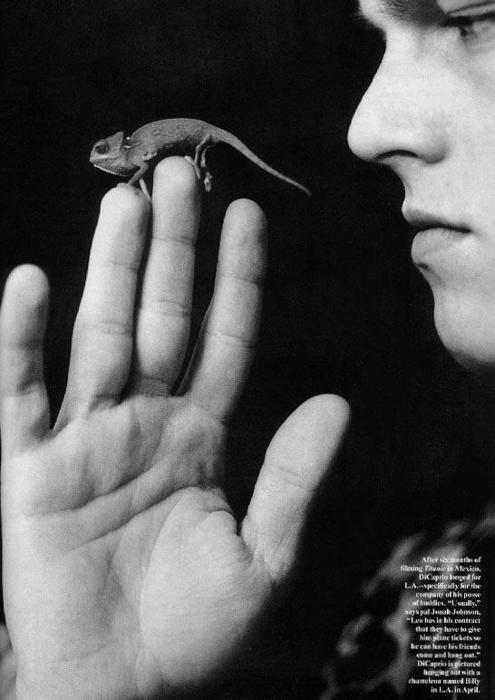 На момент съемок у Леонардо ДиКаприо было домашнее животное