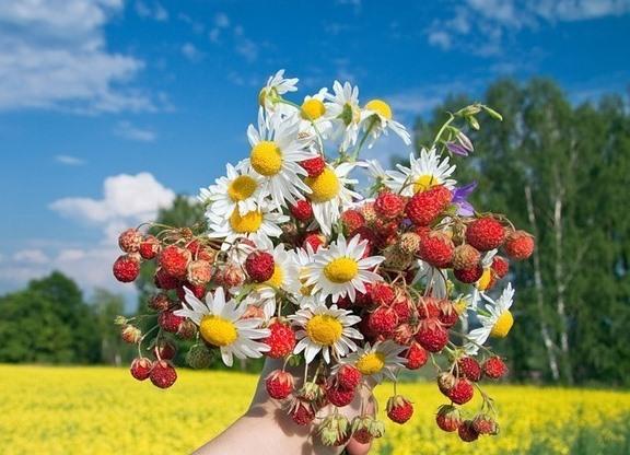 Фото летний букет цветов
