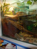 Террариум для красноухой черепахи своими руками