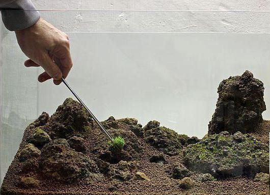 Островок для аквариума своими руками фото 803