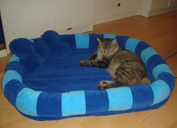 сделать лежак для кошки своими руками