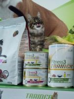 Корм для кошек Трейнер