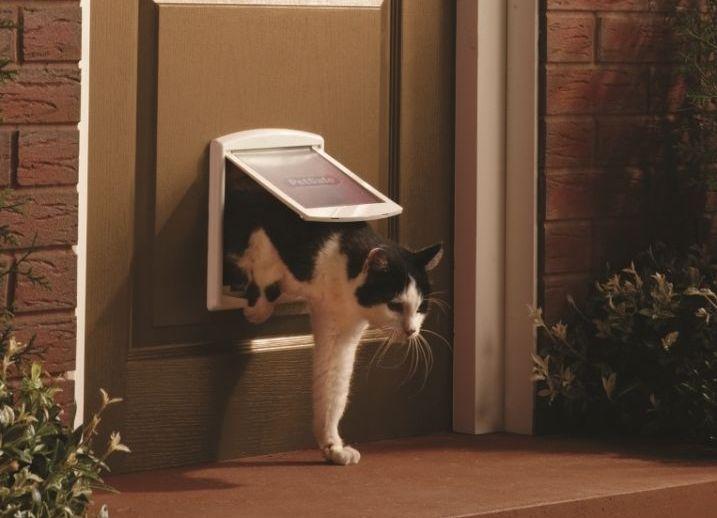 Дверь для котов своими руками 36