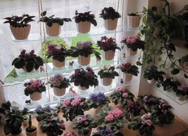 Стеллажи  для комнатных цветов