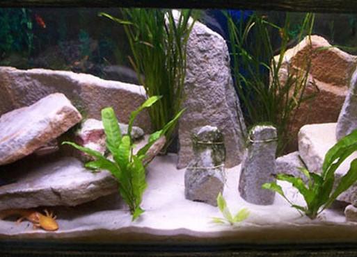 Декоративные камни аквариума своими руками
