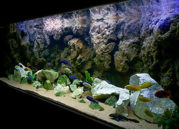 3д фоны для аквариума