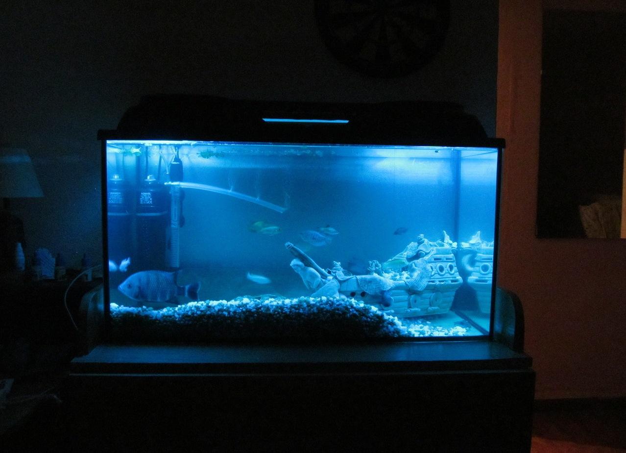 Как сделать подсветку для аквариум 536