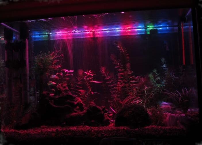 Как сделать светодиодную подсветку в аквариуме своими руками