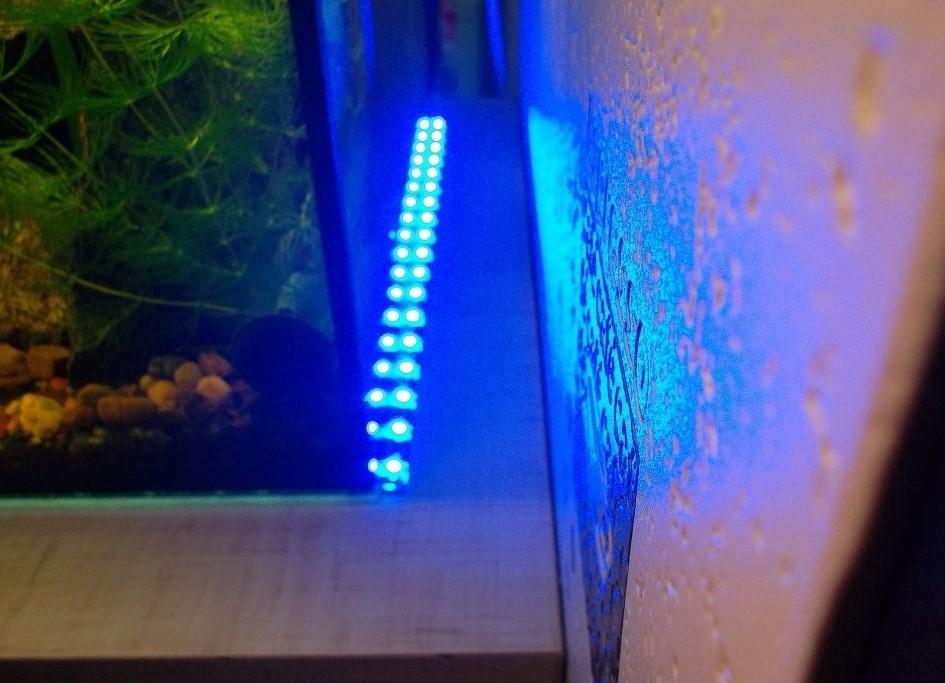Как сделать светодиодную подсветку для аквариумов