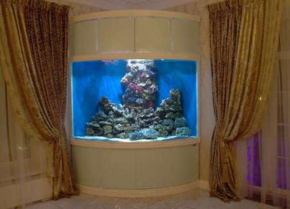Угловой аквариум оформление