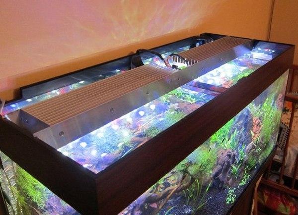 Как сделать аквариум светильником