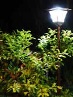 Светодиодные фонари уличного освещения - элемент ландшафтного дизайна