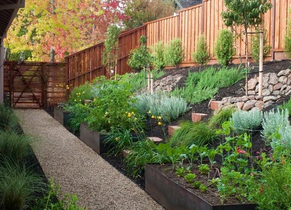 Ландшафт сада и огорода