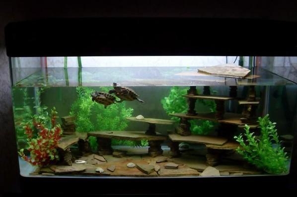 Островок для черепахи в аквариум