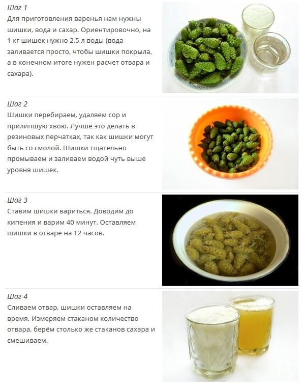 Из шишек сосны рецепт польза